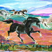 Black Pony Art Print