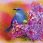 Blue Bird In The Lilac's Art Print
