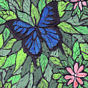 Blue Butterfly Two Art Print