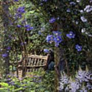 Blue Garden Respite Art Print