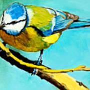 Blue On His Stick Art Print