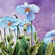 Blue Poppies Art Print by Bobbi Price