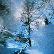 Blue Winter - From The Cycle - Straight From The Plate Art Print