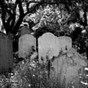 Brompton Cemetery London England 2009 Art Print