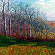 Brown County Winter Art Print