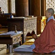 Buddhist Monk In Prayer Art Print
