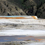 Canary Spring At Mammoth Hot Springs Upper Terraces Art Print