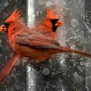 Cary Carolina Cardinals  Art Print