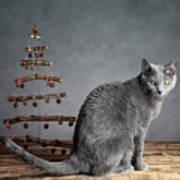 Cat Christmas Art Print