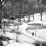 Central Park 6 Art Print by Wayne Gill