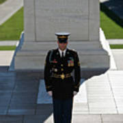 Changing Of Guard At Arlington National Art Print by Terry Moore