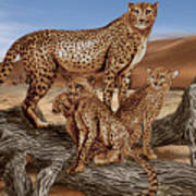 Cheetah Family Tree Art Print