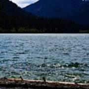 Clear Lake Washington Art Print
