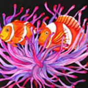 Clownfish And Sea Anenome  Art Print