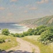 Coast Province Art Print