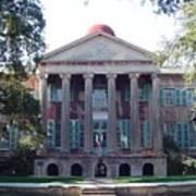 College Of Charleston Art Print
