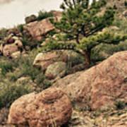 Colorado Rocky Mountains Art Print