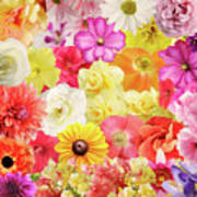 Colorful Floral Background Art Print
