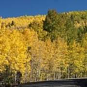 Colors Of Colorado #2 Art Print