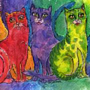 Colourful Cats Art Print