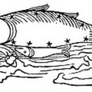 Constellation: Pisces Art Print