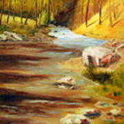 Cool Mountain Stream Art Print