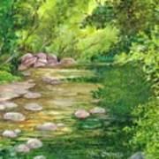 Coromandel Creek Art Print