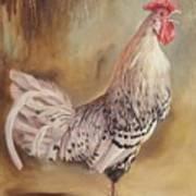 Crowing Rooster Art Print