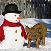 Curious Piglet And Snowman Art Print