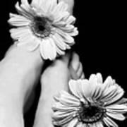 Daisy Toes Art Print