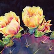 Desert Bloom 2 Art Print