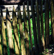 Detail Of An Old Wooden Fence Art Print