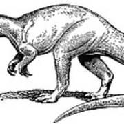 Dinosaur: Allosaurus Art Print