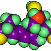 Domoic Acid Molecular Model Art Print