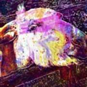 Donkey Livestock Beast Of Burden  Art Print
