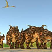 Einiosaurus Dinosaurs Art Print