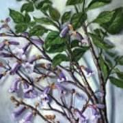 Empress Tree Art Print