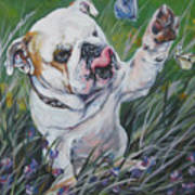 English Bulldog Art Print by Lee Ann Shepard