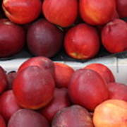 European Markets - Nectarines Art Print