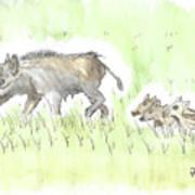 Feral Hogs Art Print