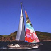 Fine Art Sails Art Print by Dan Cope