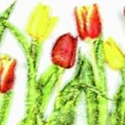 Flower Frame Border Art Print