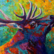 Forest Echo - Bull Elk Art Print