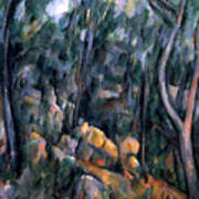 Forest In The Caves Above The Chateau Noir Art Print