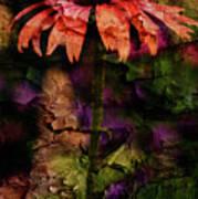 Fragmented Echinacea Art Print