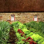 Garden Farm Art Print