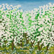 Garden In Blossom Art Print