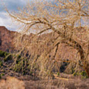 Garden Of The Gods Entrance Art Print
