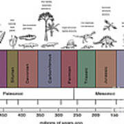 Geologic Time Line Art Print