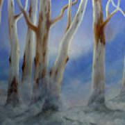 Ghostgum Mist Art Print